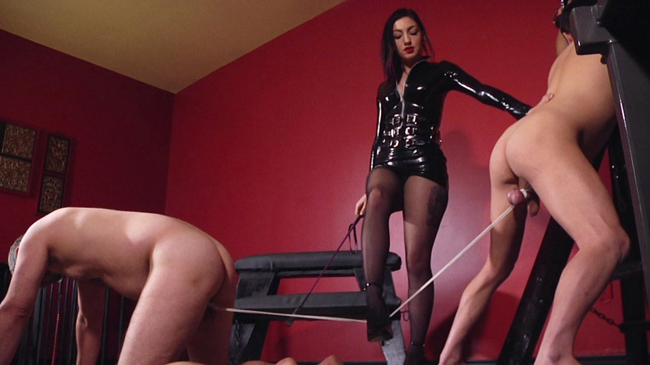 Scene with Jimmy Broadway and Cybill Troy - image 6 out of 20