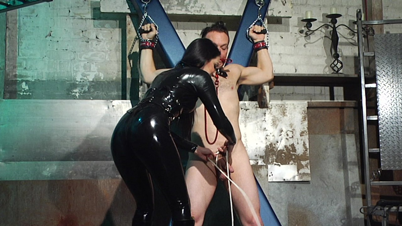 Scene with Dominik Kross and Cybill Troy - image 10 out of 20