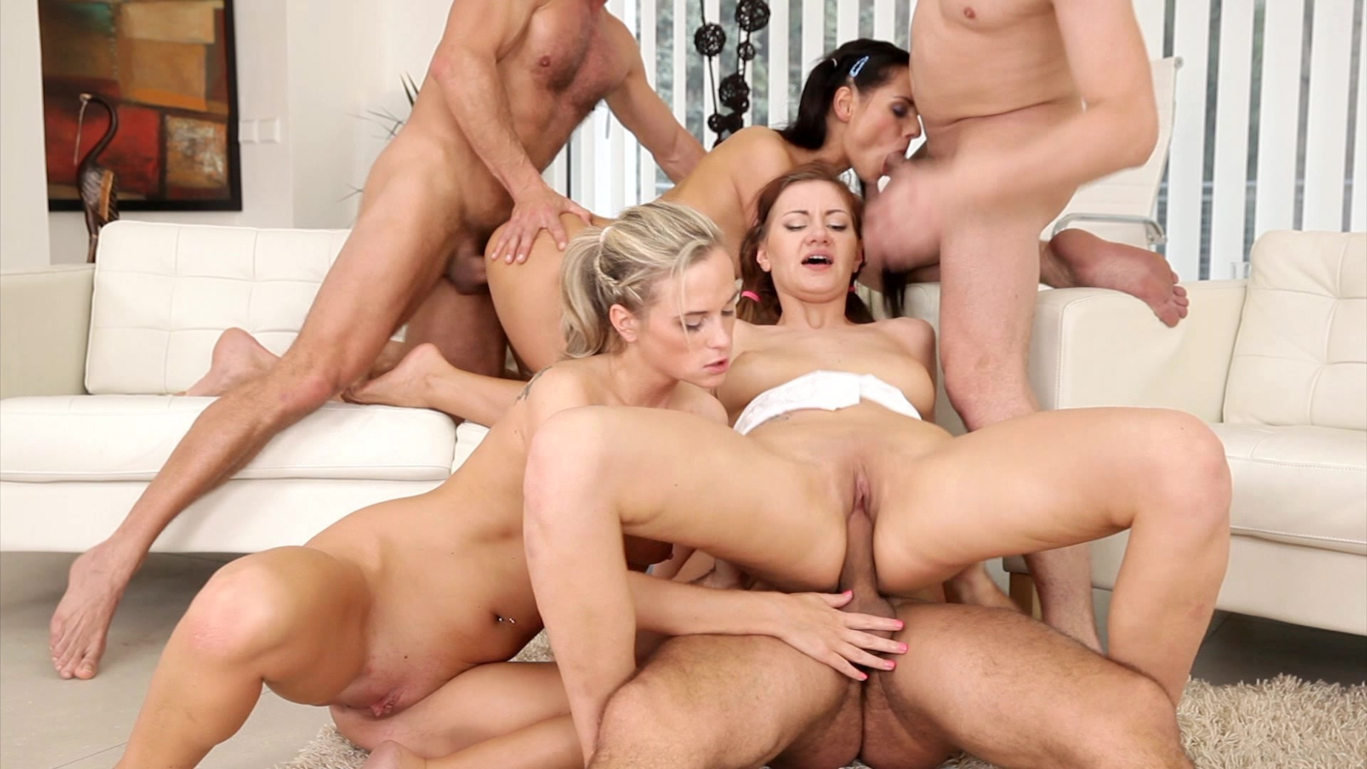 Swinger sex orgies dvds