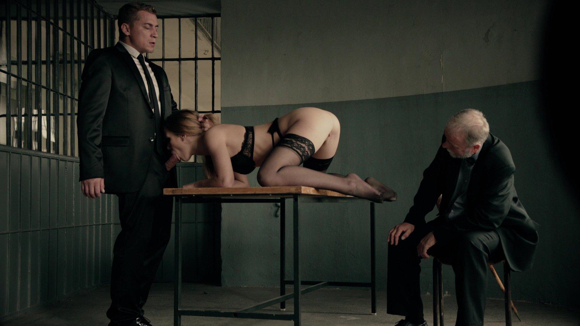 pornstar janine lindemulder anal