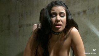Streaming porn video still #1 from Fierce FemDoms