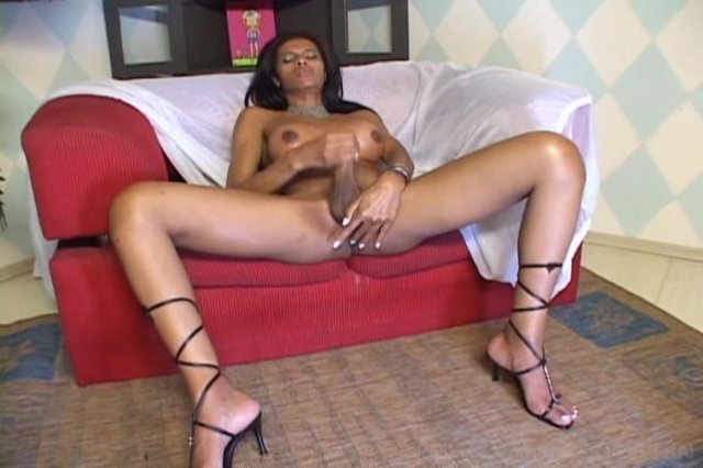Streaming porn video still #1 from She-Male Strokers 31
