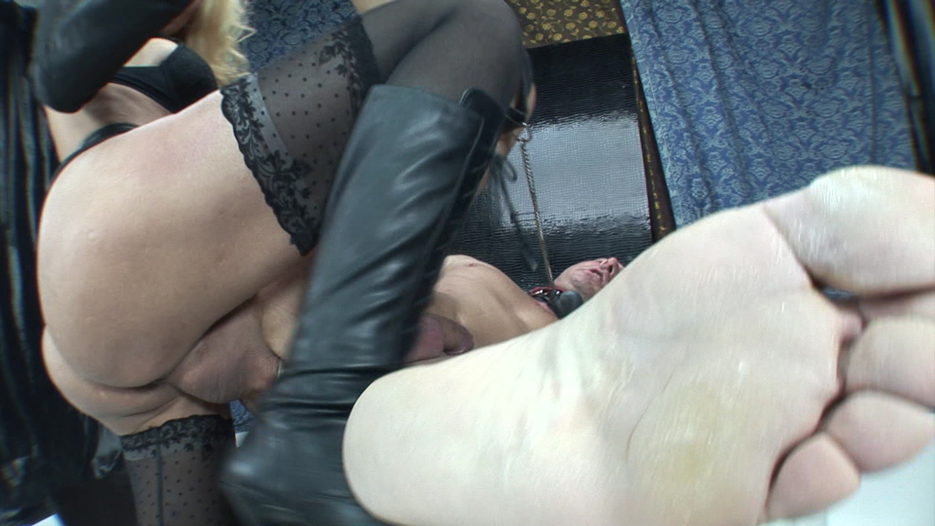 Shemale Prostitute: 3019 videos