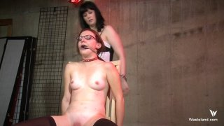 Streaming porn video still #3 from Femdom Frenzy