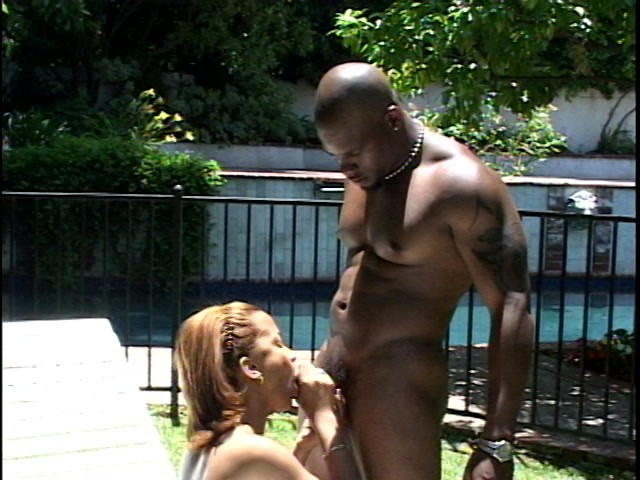 Karrine Steffans Xxx Video Porn Videos